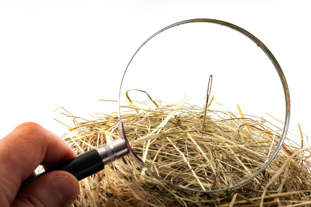 idiom of the needle in the haystack relates to precise marketing
